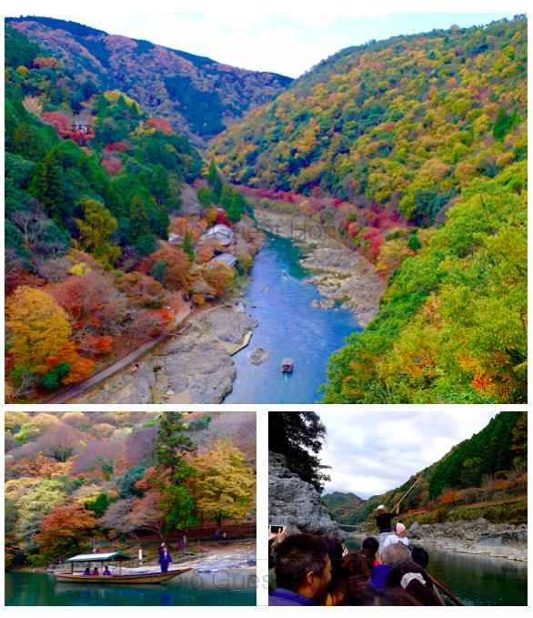 arashiyama park ,autumn,kyoto,gojoguesthouse